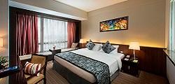 Hotel Escort